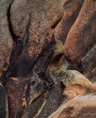 Photograph - Canyon Wall Abstract by Paul Breitkreuz
