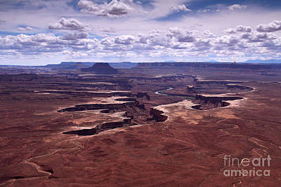 Photograph - Canyonlands 1 by Butch Lombardi
