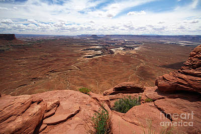 Photograph - Canyonlands by Butch Lombardi