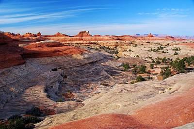 Photograph - Canyonlands Landscape by Cascade Colors