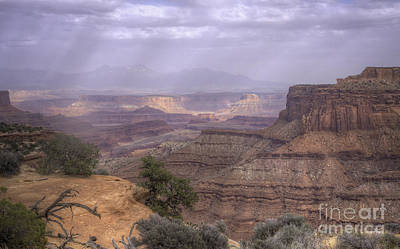 Photograph - Canyonlands Np by David Waldrop