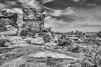 Photograph - Canyonlands by Shirley Mangini