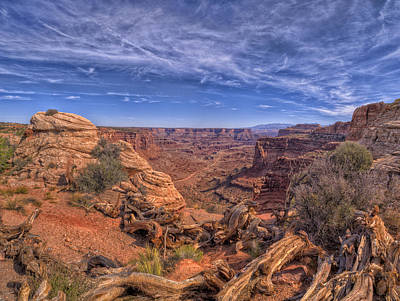 Photograph - Canyonlands by Stephen Campbell
