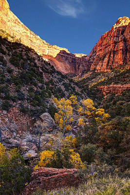 Zion National Park Photograph - Canyons Of Zion At Autumn by Andrew Soundarajan