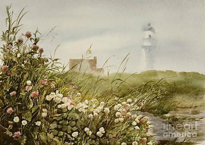 Cape Clover Art Print