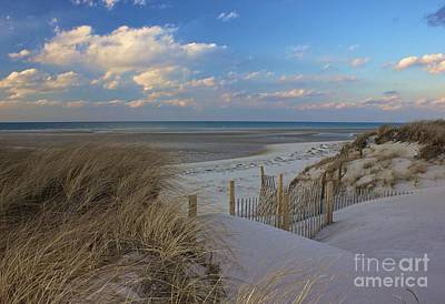 Photograph - Cape Cod  by Amazing Jules