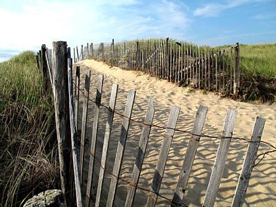 Cape Cod Dune Fencing Art Print