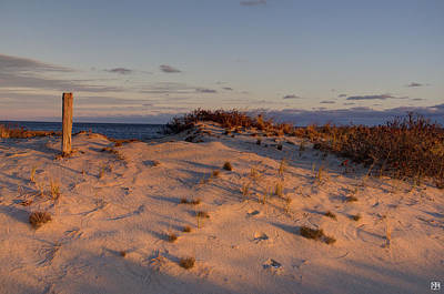 Photograph - Cape Cod Dune by John Meader