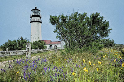 Painting - Cape Cod Lighthouse by John Haldane