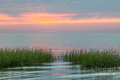 Photograph - Cape Cod Ripples by Susan Cole Kelly