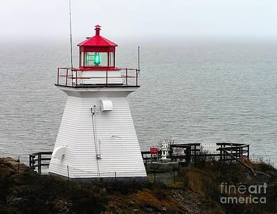Photograph - Cape Enrage Lighthouse by Nick Zelinsky