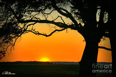 Cape Fear Sunset 2 Art Print