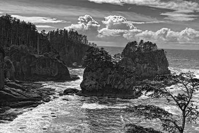 Photograph - Cape Flattery by Wes and Dotty Weber