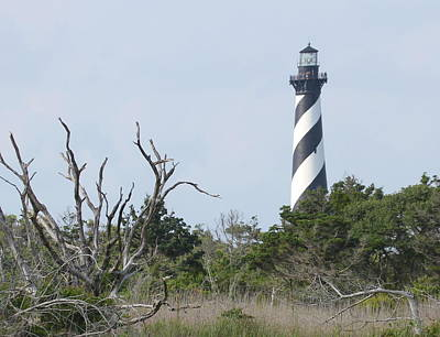 Cape Hatteras Photograph - Cape Hatteras Lighthouse 2014 16  by Cathy Lindsey