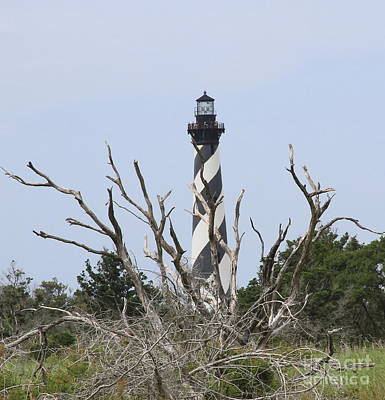 Beacon Photograph - Cape Hatteras Wild 3 by Cathy Lindsey
