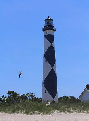 Gull Photograph - Cape Lookout And Gulls 2 by Cathy Lindsey