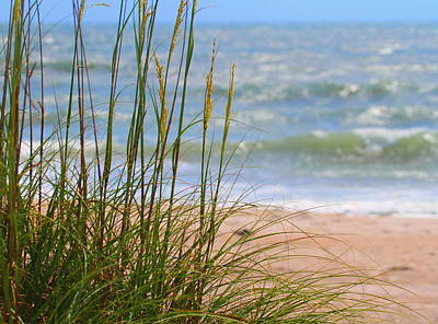Coast Photograph - Cape Lookout National Seashore 4  by Cathy Lindsey