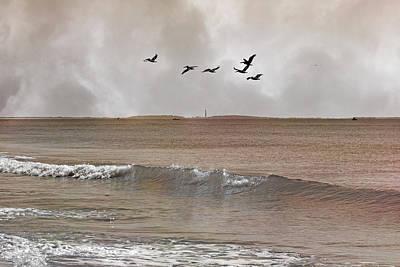 Cape Lookout Pelicans Art Print