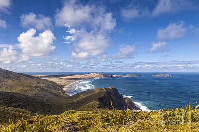 Photograph - Cape Maria Van Diemen Northland New Zealand by Colin and Linda McKie