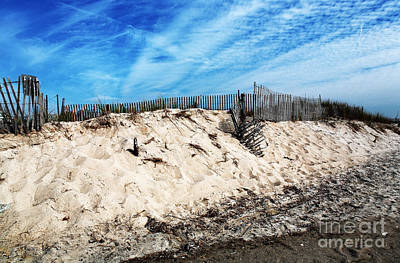 Photograph - Cape May Dunes by John Rizzuto