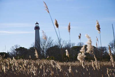 Photograph - Cape May Light by Jennifer Ancker