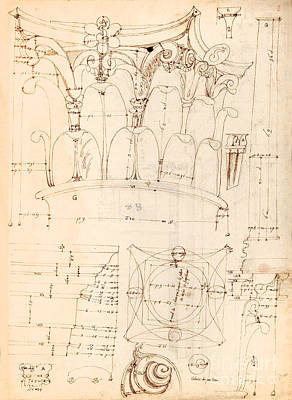 Capital Drawing - Capital Detail Drawing by Jon Neidert