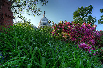 Art Print featuring the photograph Capitol Dome by Michael Donahue