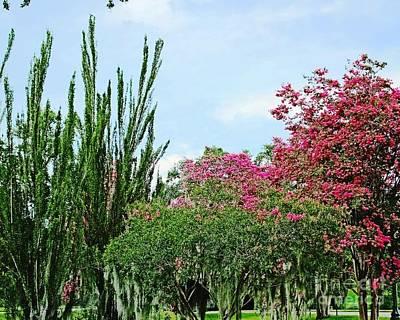 Photograph - Capitol Park View Baton Rouge Louisiana by Lizi Beard-Ward