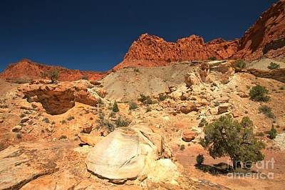 Photograph - Capitol Reef Rugged Landscape by Adam Jewell