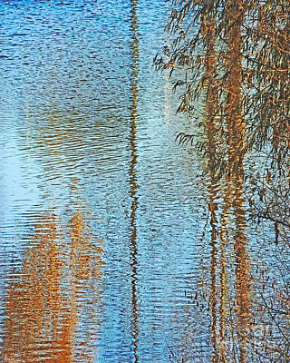 Photograph - Capitol Waters by Lizi Beard-Ward