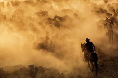 Running Horse Photograph - Cappadocia Wild Horses by Dan Mirica