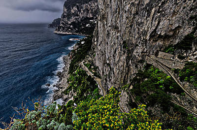 Photograph - Capri Krupp Path Rocks Coast by Enrico Pelos
