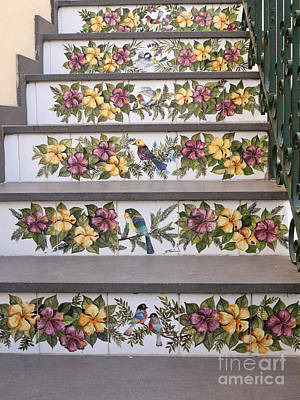 Photograph - Capri Tiled Staircase With Birds by Brenda Kean
