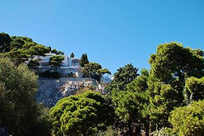Photograph - Capri's Gardens by Dany Lison