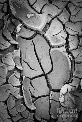 Caprock Cracked Mud Art Print by Inge Johnsson