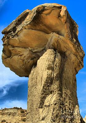 Photograph - Caprock Mushroom by Adam Jewell