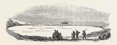 Arctic Drawing - Captain Austins Arctic Expedition Winter Quarters Of Sir by English School