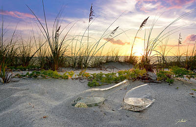 Captiva Sunset Art Print by Jon Neidert