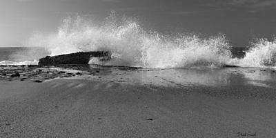 Photograph - Captivating In Black And White by Heidi Smith