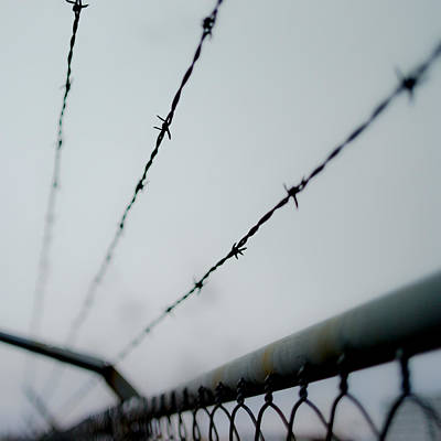 Barbed Wire Fences Photograph - Captive by Aaron Aldrich