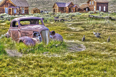 Photograph - Car At Bodie With Ducks by SC Heffner