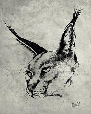 Animals Drawings - Caracal Greyscale by Anthony Mwangi