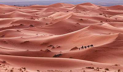 Caravan In Sahara Desert Morocco Original