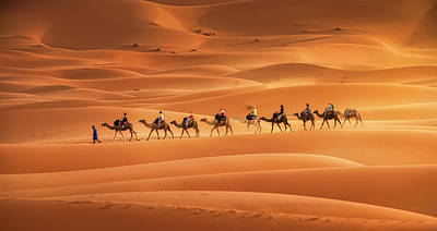 Camel Wall Art - Photograph - Caravan by Jorge Ruiz Dueso