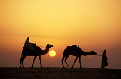 Desert Sunset Photograph - Caravan Morocco by Panoramic Images