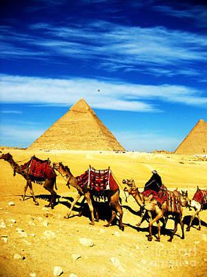Caravan Of Camels 2 Art Print