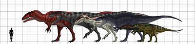 Carcharodontosauridae Size Chart Art Print by Vitor Silva
