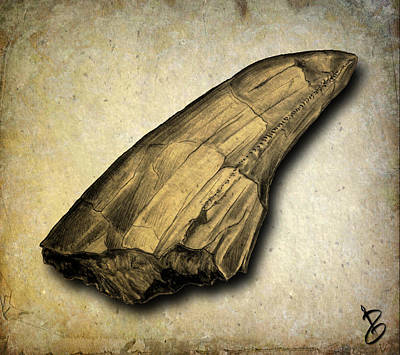Triassic Drawing - Carcharodontosaurus Tooth by Paul Gioacchini