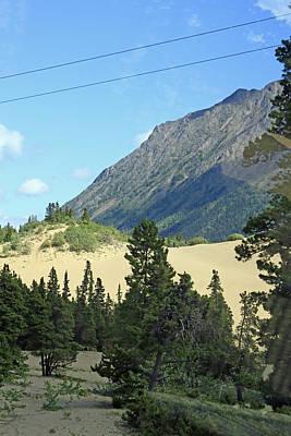 Photograph - Carcross Desert In Alaska by Ronald Olivier