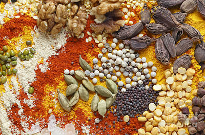 Photograph - Cardamoms Nuts And Spices For Asian Food by Paul Cowan